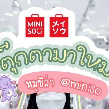 "Miniso ""หมูซิลล่า"" ตุ๊กตาลูกครึ่งสุดคิ้วท์"