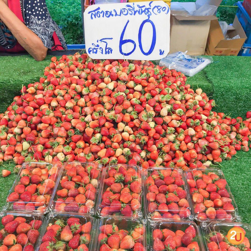 kasetfair2020 Strawberry