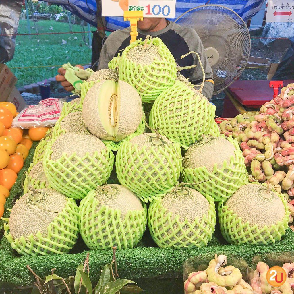 kasetfair2020 melon