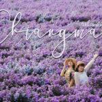 2Uพาแอ่วเหนือ เที่ยวสวนดอกไม้ นอนสบายกลางเวียงที่ U ChiangMai